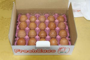 那須の卵(20個入り)